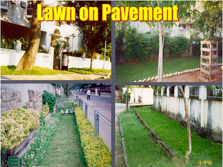 lawn on pavement
